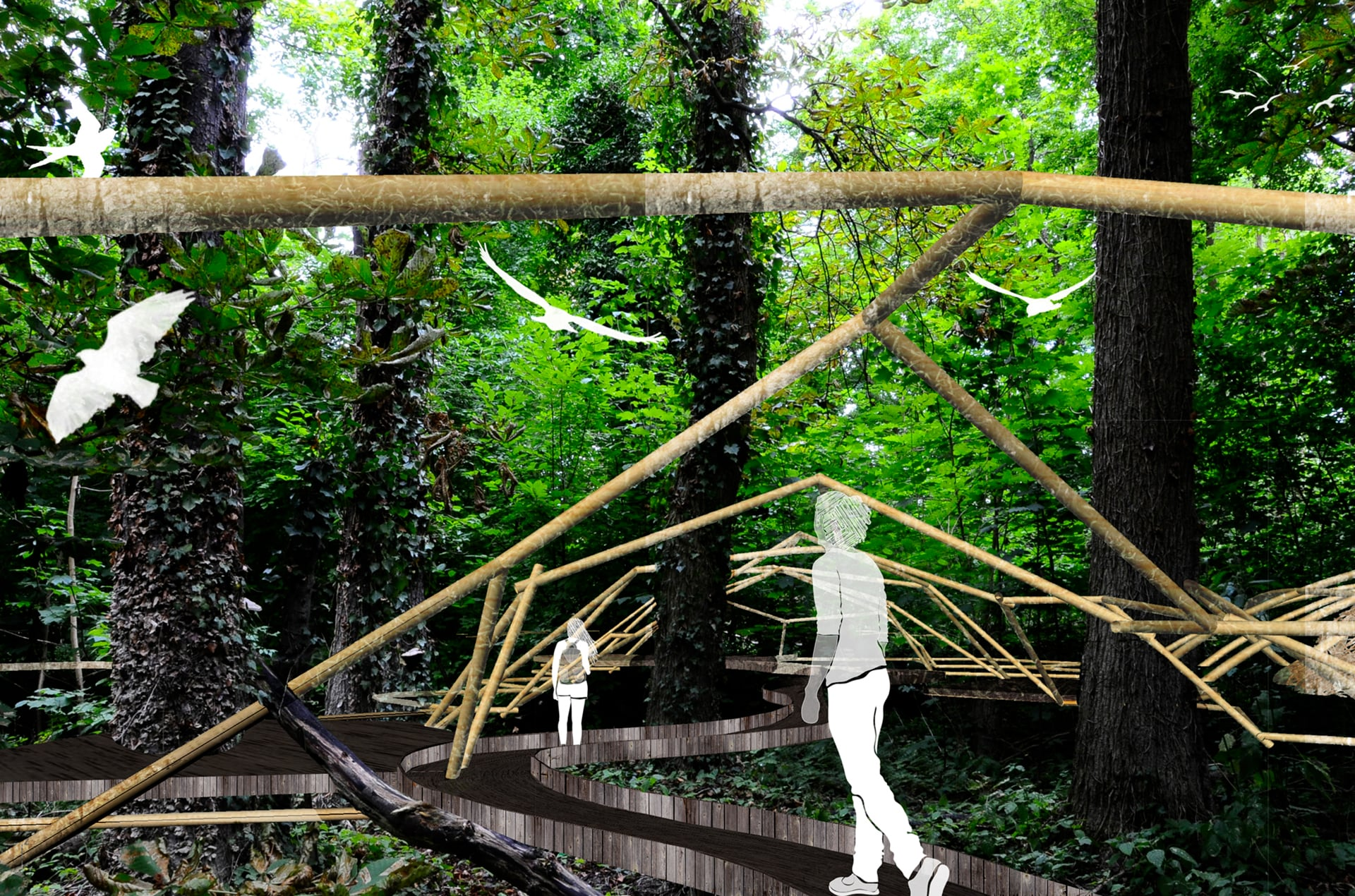 projet-sequence-personnage-foret-architecture