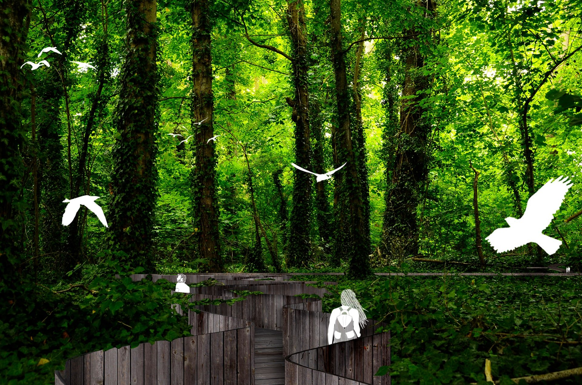 projet-sequence-foret-architecture